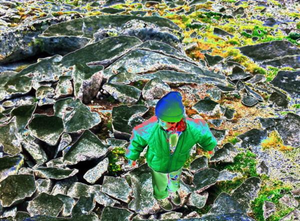 noemi-molitor_hulk-rocks-green_2015